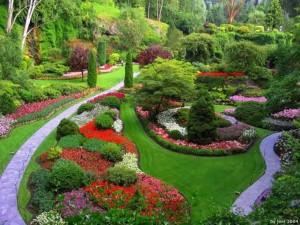 mt laurel garden club